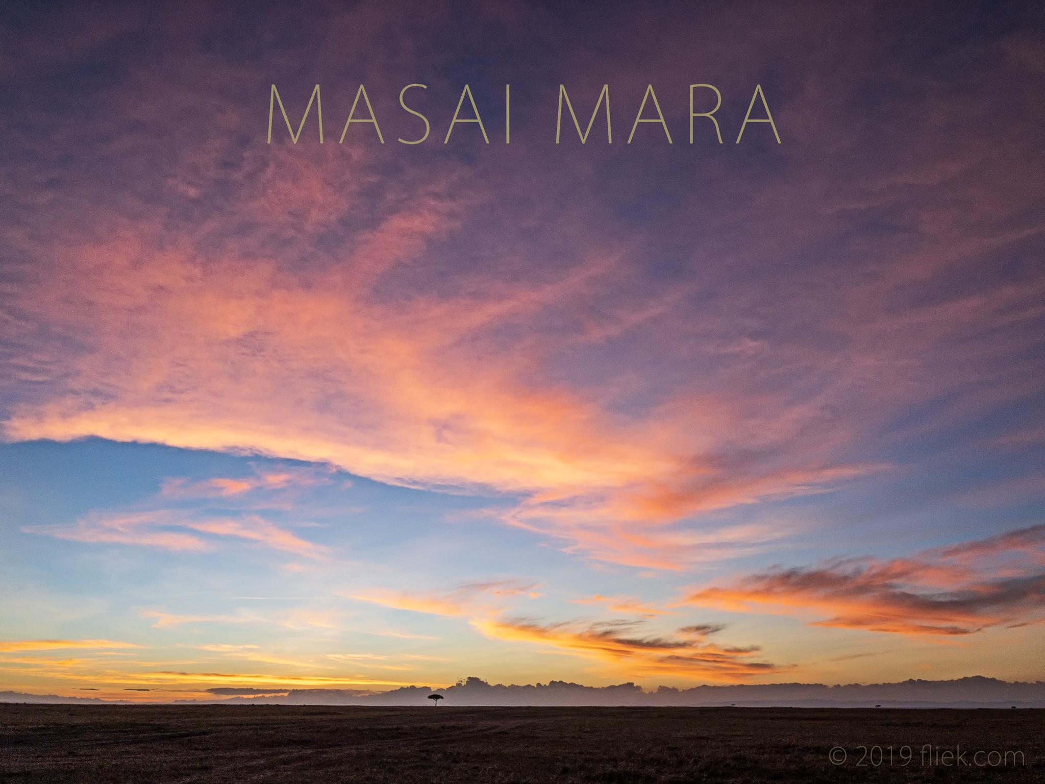 The Masai Mara Series